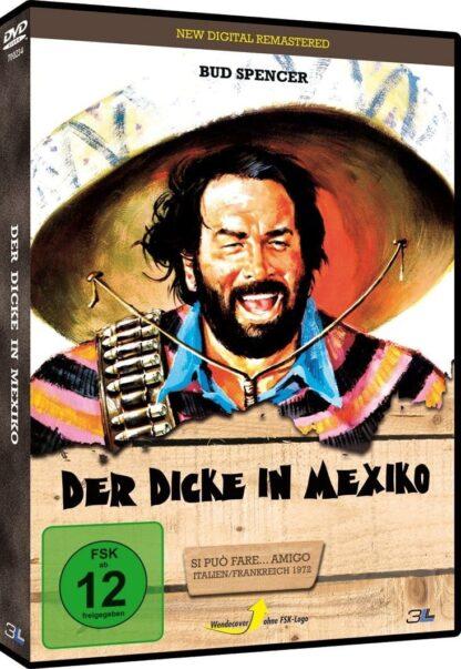 Der Dicke in Mexiko [DVD]